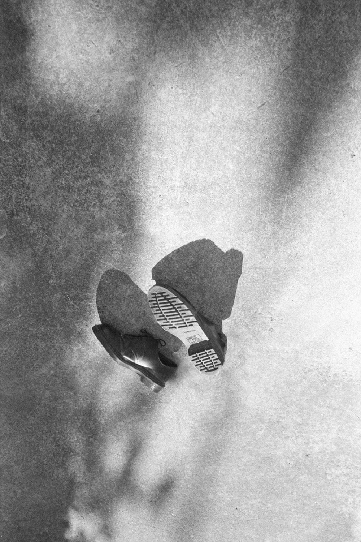 Leonardo Taddei - This Bird Had Flown - Pellicola Magazine